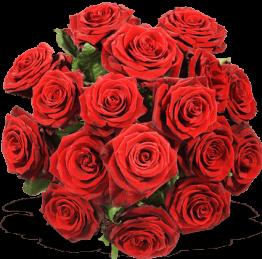 Rosen verschicken - Rote Rosen versenden