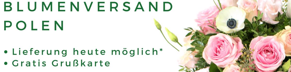 Blumenversand Polen Blumen in Polen verschicken