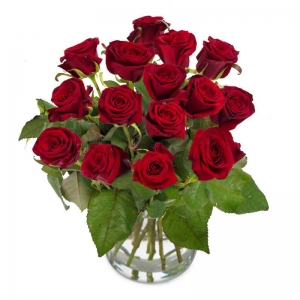 Flower Delivery Germany - Send Flowers & red Roses to Germany