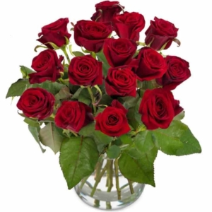 Red Roses - Euroflorist Germany