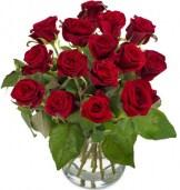 Rote Rosen EF verschicken