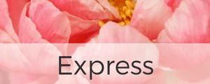 Express Blumen Berlin - Blumen per Express heute online verschicken