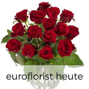 Rosen heute per Express verschicken
