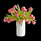 20 gefüllte Tulpen Columbus