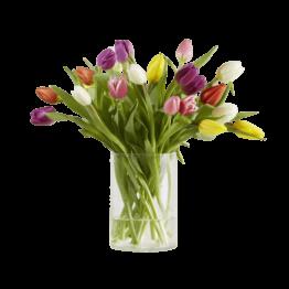 20 Stiele bunte Tulpen