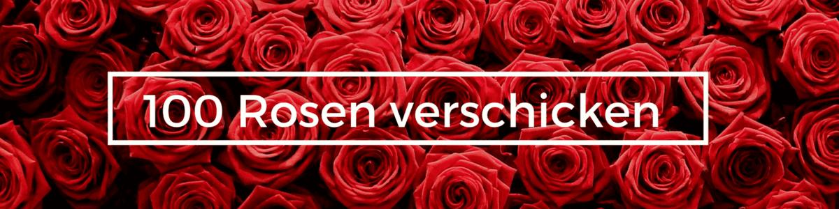 100 rosen strauß