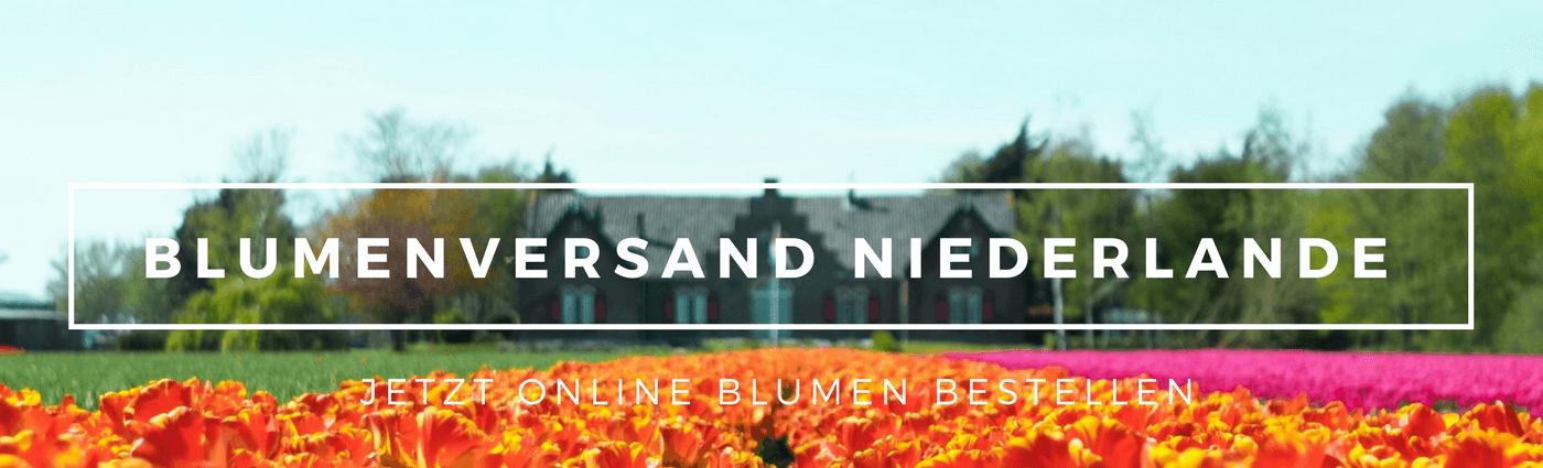 Blumenversand Niederlande Holland