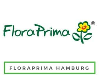 Blumen Lieferservice und Blumenversand in Hamburg