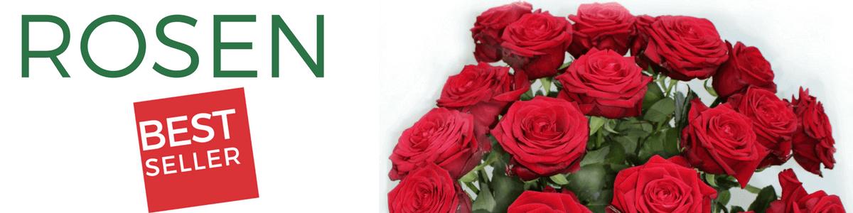 Rosen Versand- Rote Rosen verschicken