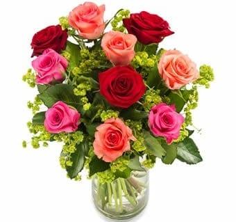 Rosen nach Polen verschicken
