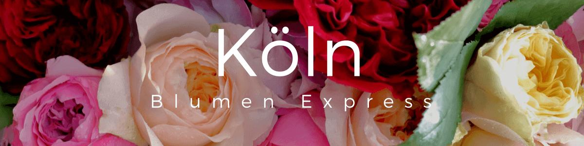 Blumen verschicken per Express in Köln: Blumenversand in Köln