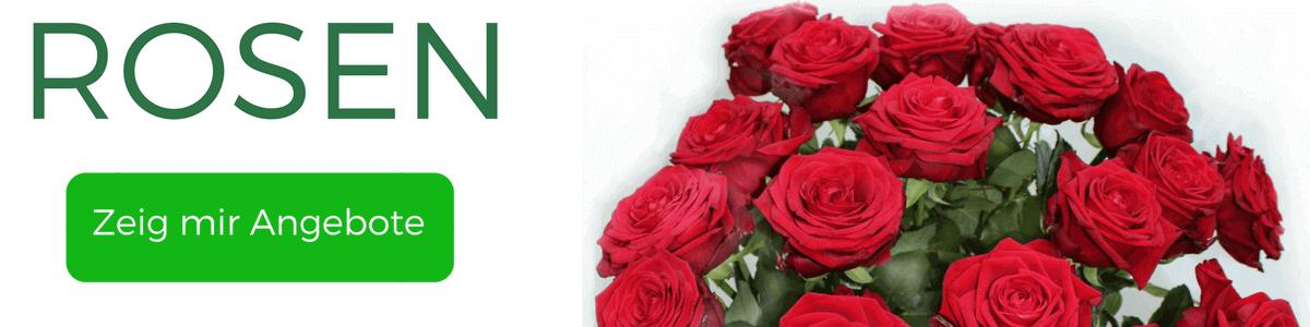 Rosen verschicken - Angebote