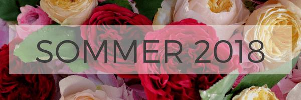 Sommer Blumenstrauß - Blumen Vergleich