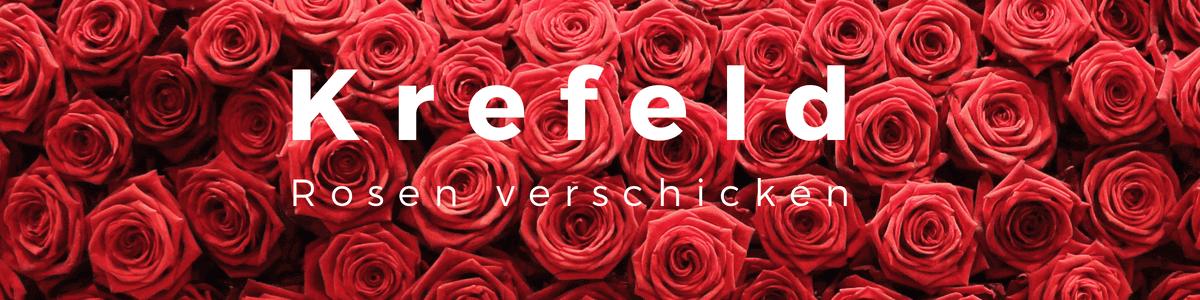 Krefeld - Rosen verschicken