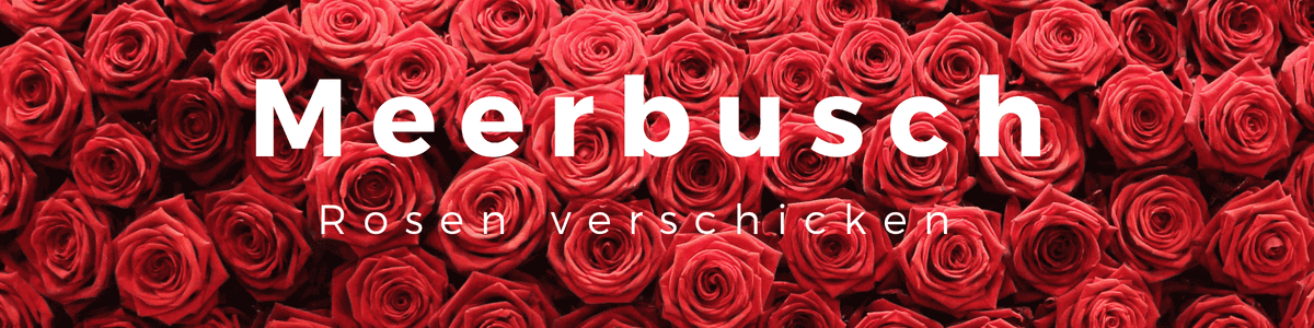 Rosen verschicken Meerbusch