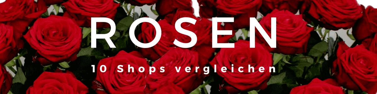 Rosen verschicken - Rosenstrauß