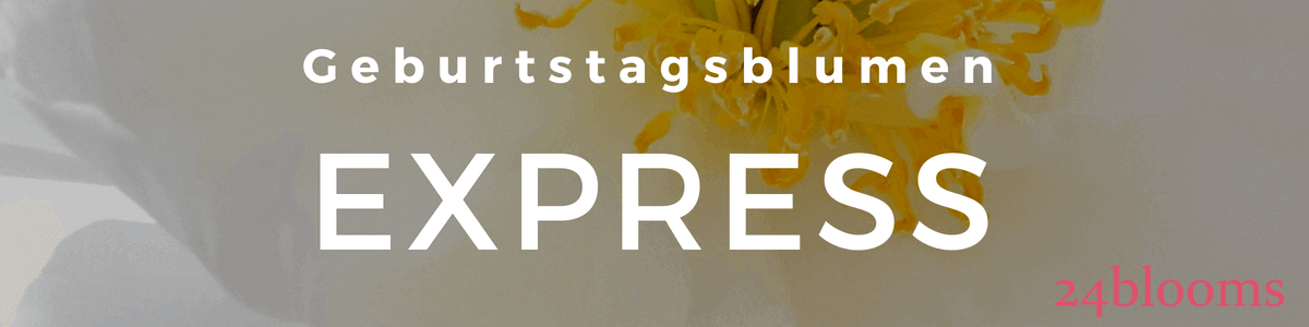 Blumen zum Geburtstag - Express