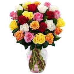 Blumenversand USA - Rosen
