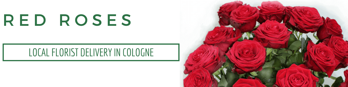 Send Roses to Cologne