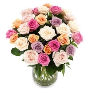 Herrliche Rosen - Blumen in die USA verschicken