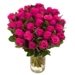 Pinkfarbene Luxus-Rosen