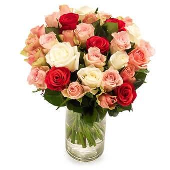 Blumenversand USA - Sanfte Rosen