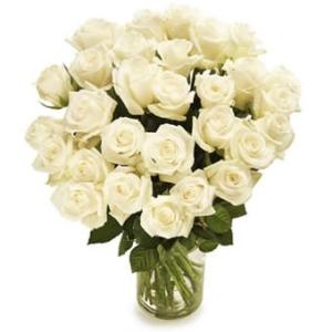Weiße Rosen - Blumenversand USA