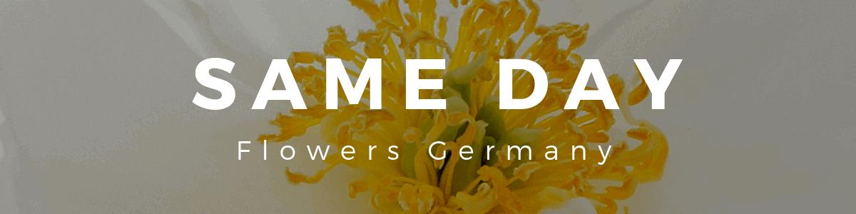 Same Day Flowers Germany