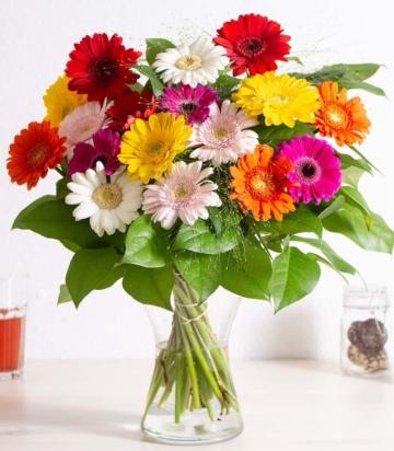 Blumenstrauß Prachtvolle Gerbera