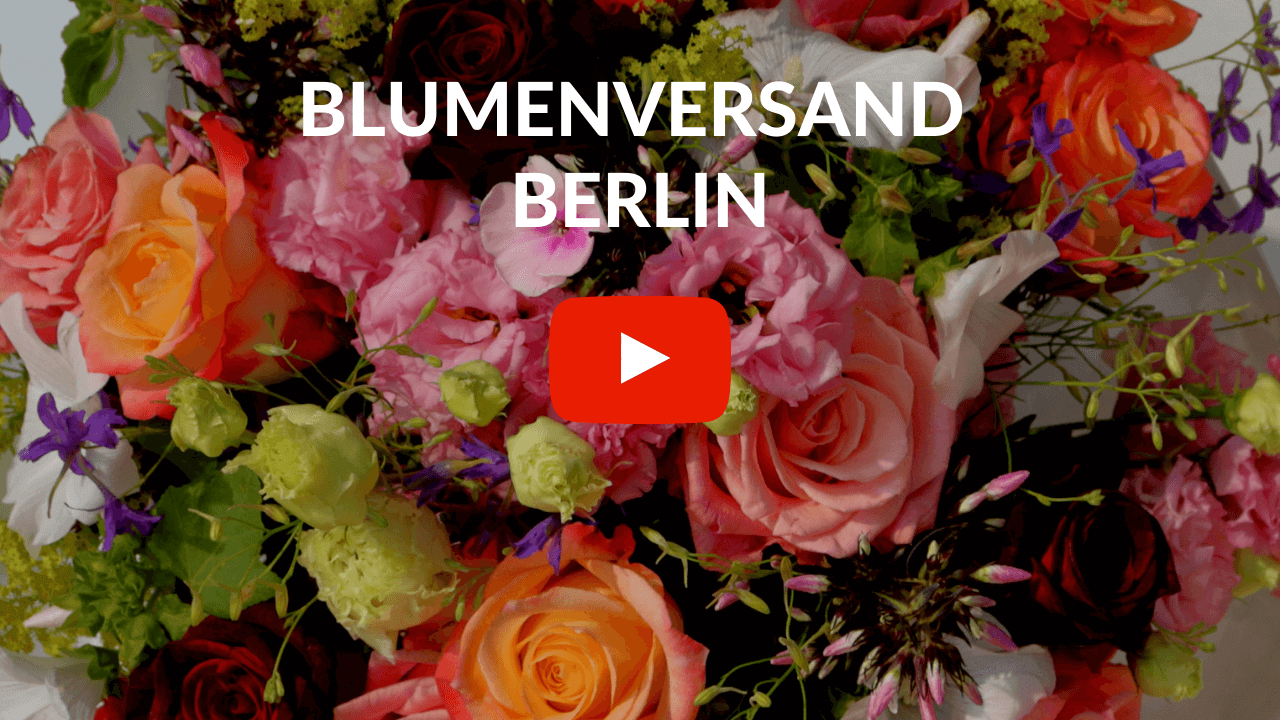 Blumenversand Berlin Youtube