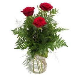 3-rote-rosen