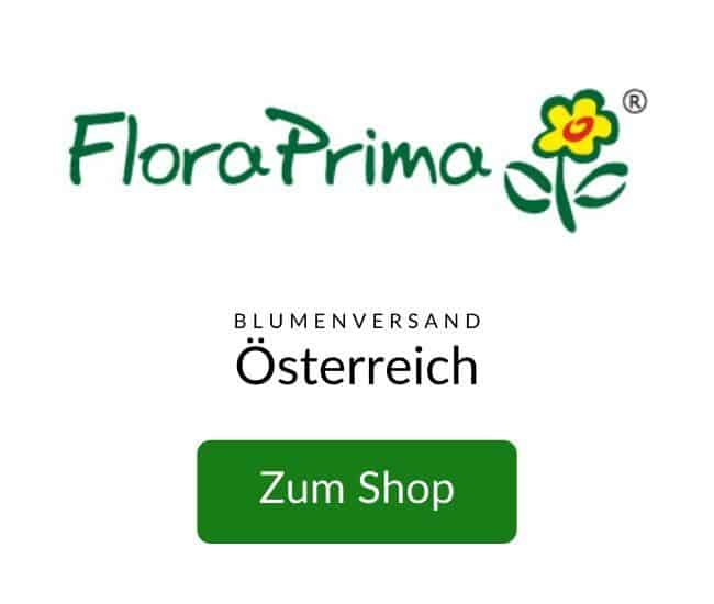 Flower Delivery Austria - Send Flowers to Austria - Same Day