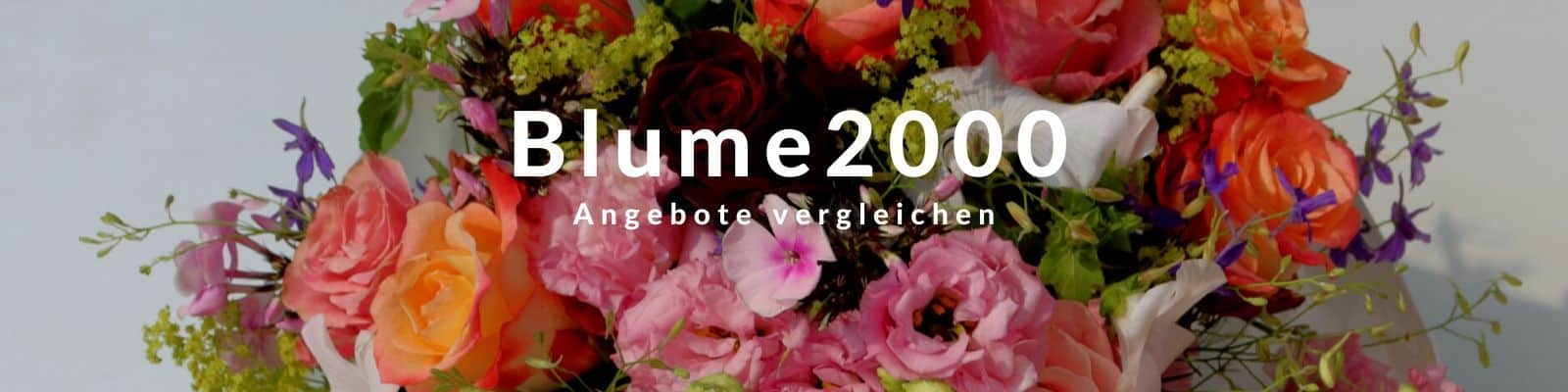 Banner Blume2000 Blumenversand