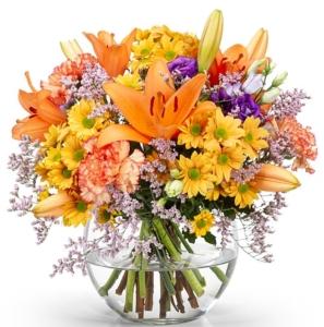 Blumenversand Aldi Blumen
