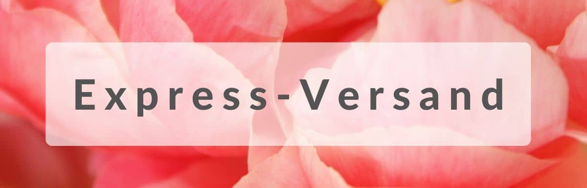 Blumen verschicken in Essen per Express - Blumenversand