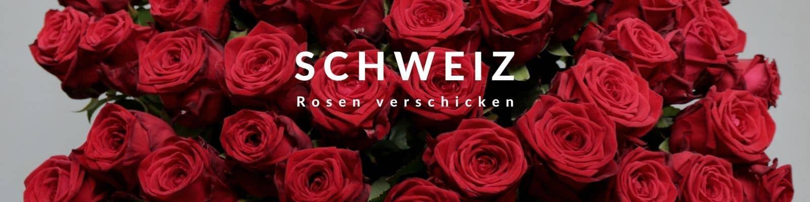 Rosen verschicken Schweiz -Rosenbote
