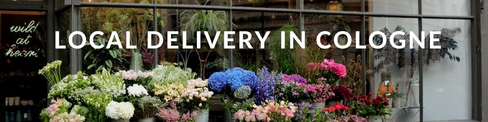 Same Day Flower Delivery Cologne - Send Flowers