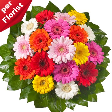 Gerbera Blumenversand