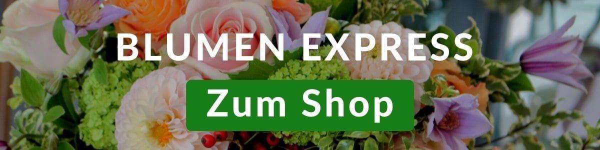 Blumen Express - Blumenversand heute - 24 Stunden