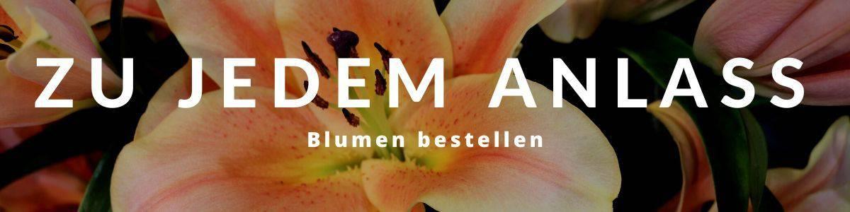 Blumen online bestellen und verschicken zu jedem Anlass
