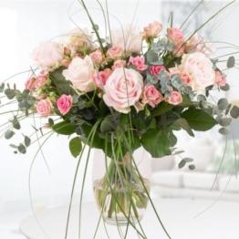 rosenstrauss-sophia