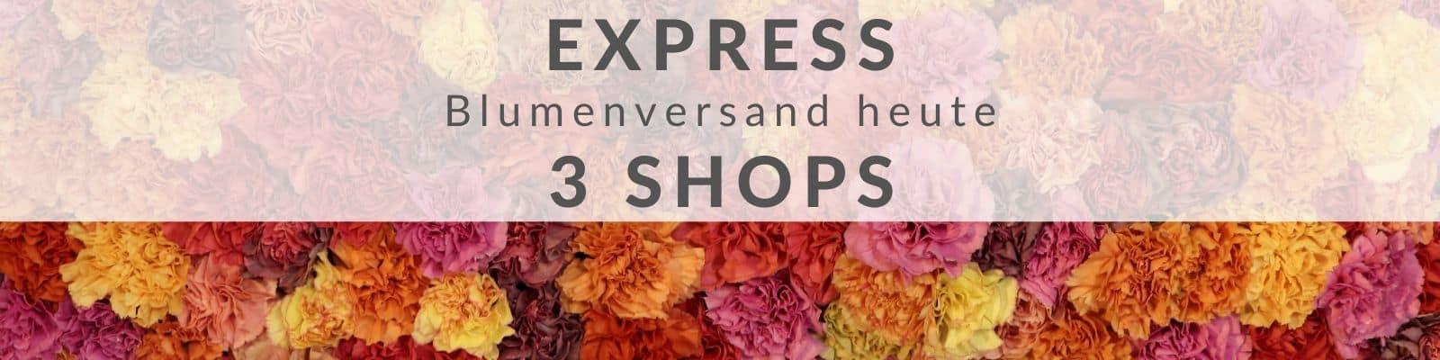 Blumen Express - online Blumenversand heute - 24 Stunden Lieferung