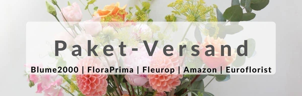 Blumen verschicken Paket-Versand