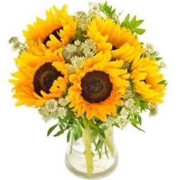 Blumenstrauß Sonnenblumen verschicken