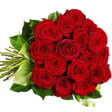 Roses red - Flower Delivery Germany