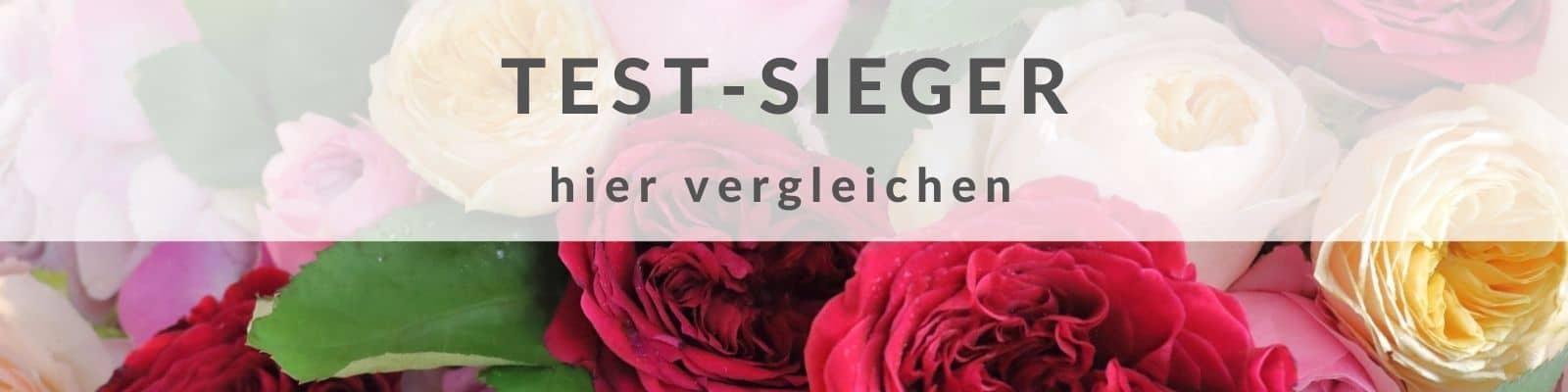 Blumen verschicken TEST - Blumenversand - Blumen Lieferservice online