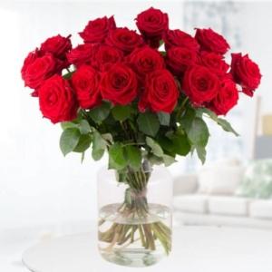 100 rote Rosen - 20, 25, 30, 40, 50, Rosen ab 39,95*