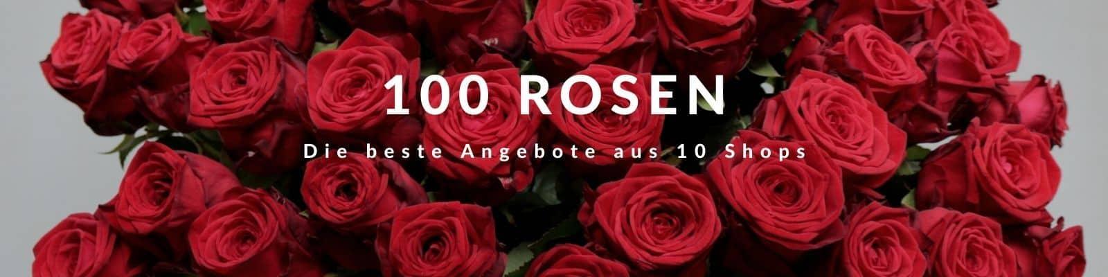 100 Rosen verschicken - Rosenstrauß mit 100 Rosen