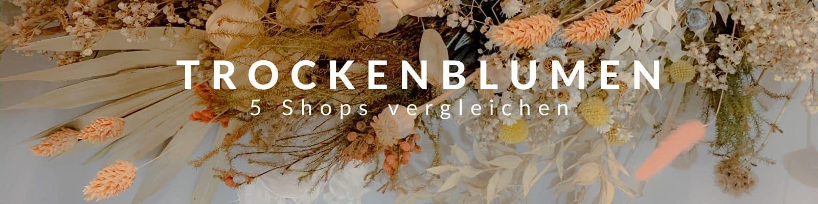 Trockenblumen online