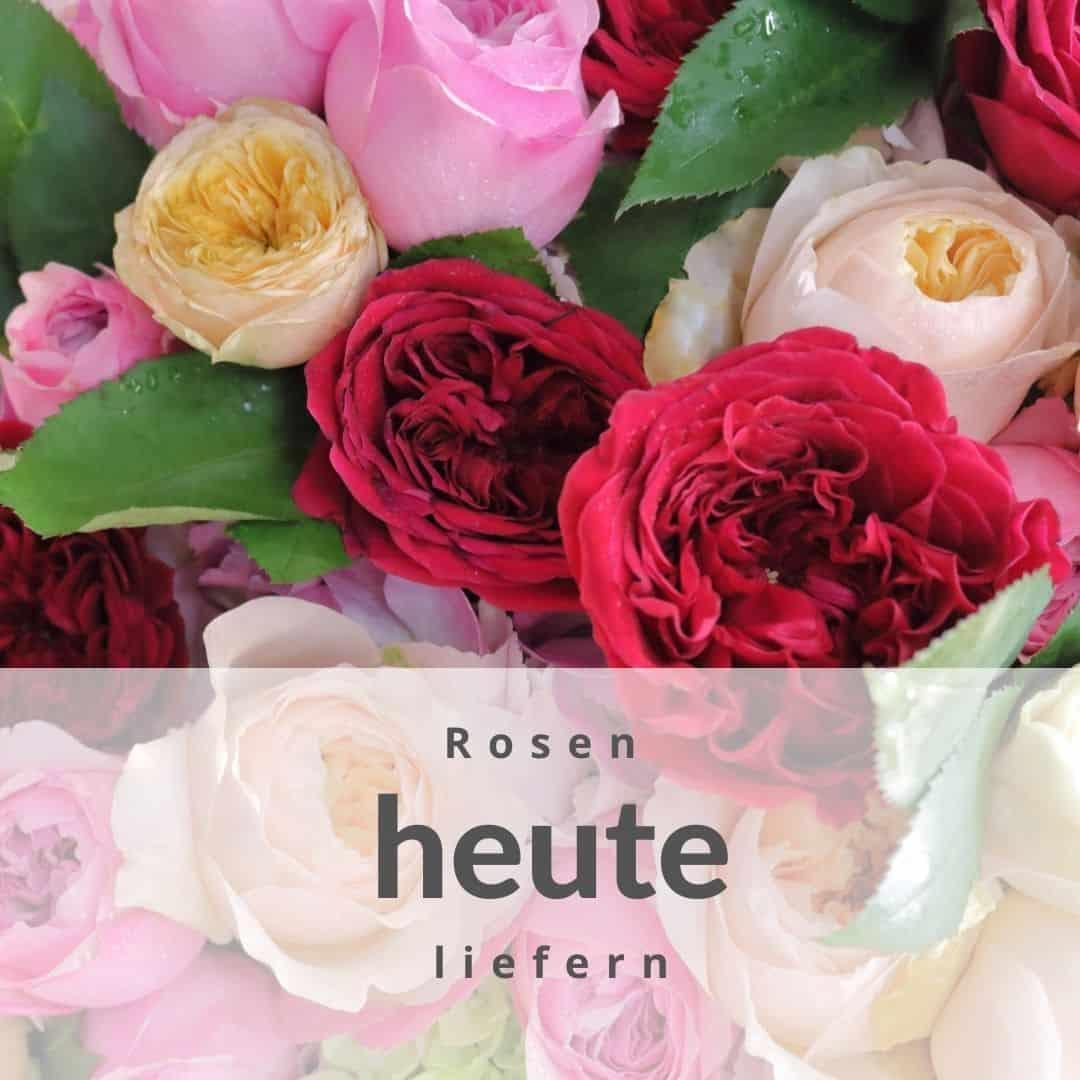 Rosenstrauss heute verschicken